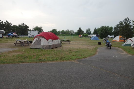 Salisbury Beach State Reservation Campground: There's my tent (the blue one) supposedly not on my strip of land