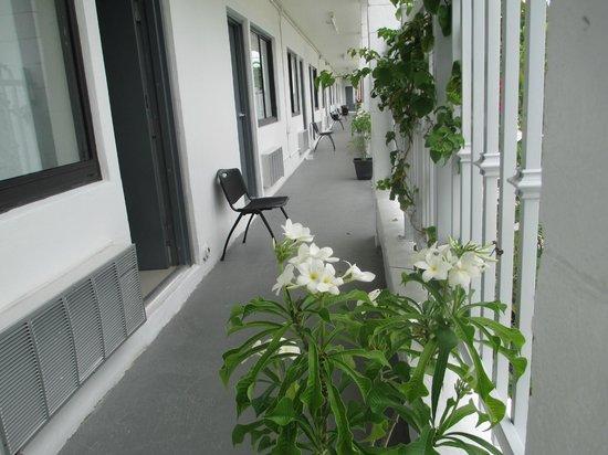 Shalimar Motel: Hotel & grounds