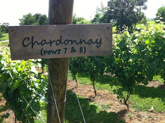 Crushed Cellars Winery: Their chardonnary is excellent