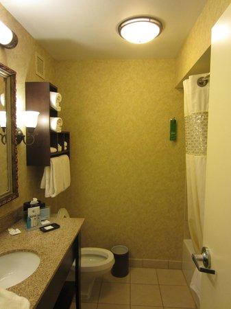 Hampton Inn Charleston - Historic District: The Dungeon: Dark, dated bathroom