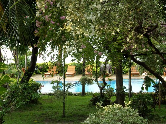 Kusuma-Jaya-Indah Resort : garden and pool