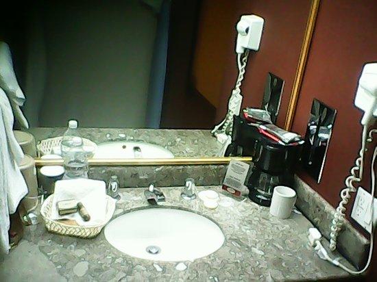 Hotel Casa Grande Delicias: Lavabo, sorry, shampoo y jabon estsban en la ducha