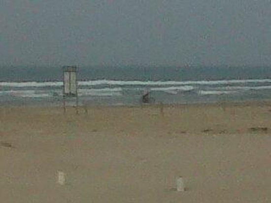 Arenas del Mar: la playa