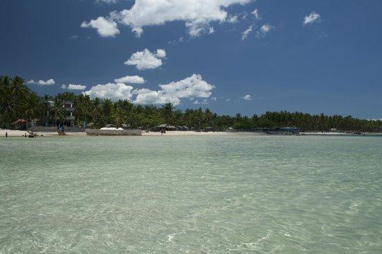 Skip's Beach Resort: the neighbors