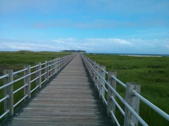 Silver Sands State Park: Entrance to the beach- wooden bridge