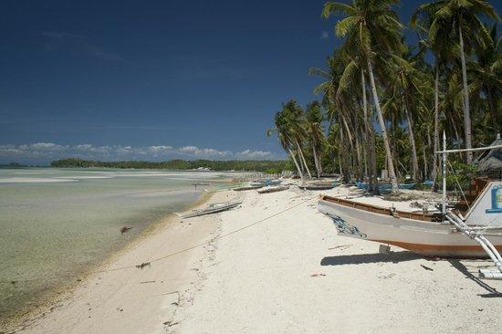 Skip's Beach Resort: outside view