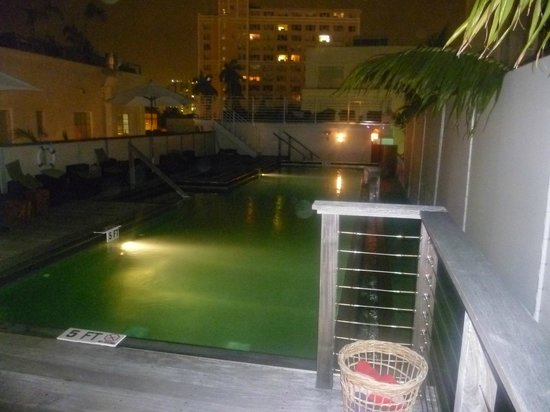 Posh South Beach Hostel : piscina