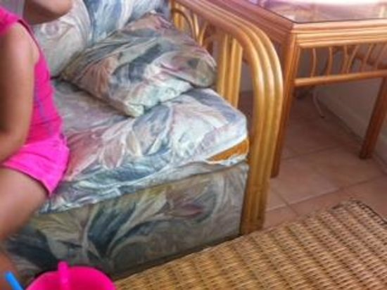 Rainbow Bend Fishing Resort: torn and stained sofa..extremely dirty once you open it