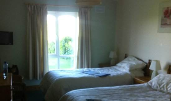 Kilbawn Country House : Twin room