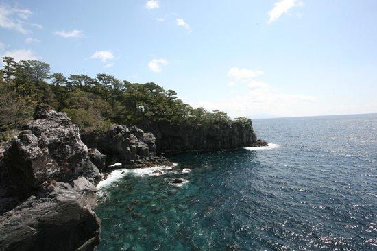 Jogasaki coast - Picture of Hanafubuki, Ito - TripAdvisor