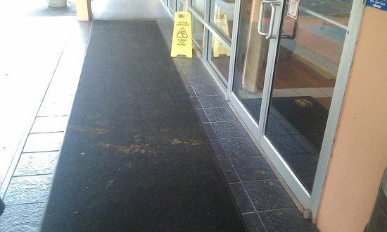 Best Western Tallahassee-Downtown Inn & Suites: tapis de l'entrée dégueulasse !!