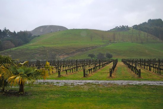 The Farmhouse at Mission Estate: Mission Vineyards