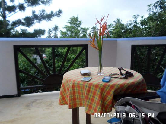 Black Beauty Guesthouse: View from my balcony area