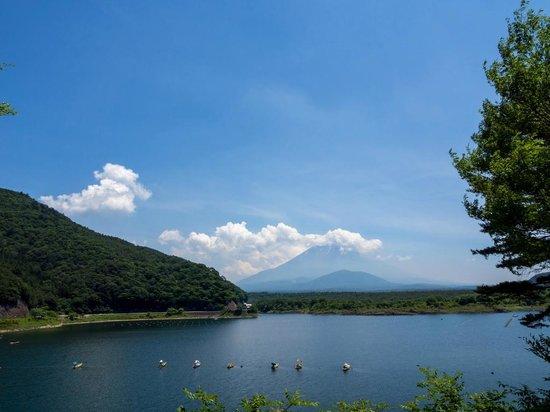 Lake Shoji : 子抱き富士