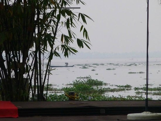 The Park on Vembanad Lake: Lake view