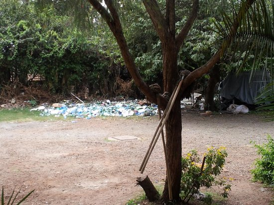 Habesha: this scene of garbage is just next to the restrooms.