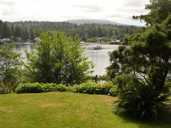 Cottages at Woods End Landing in Bamfield : Beautiful view from our cabin.