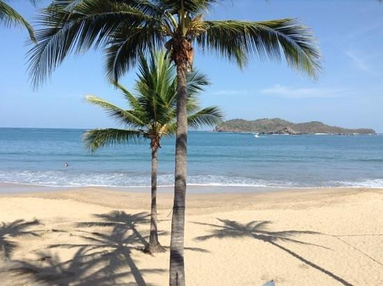 Ixtapa Island (Isla Ixtapa): Ixtapa island and palm trees
