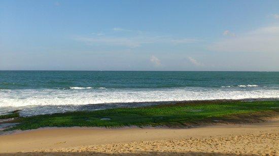 Cinnabar Resort: beach cinnmar resort