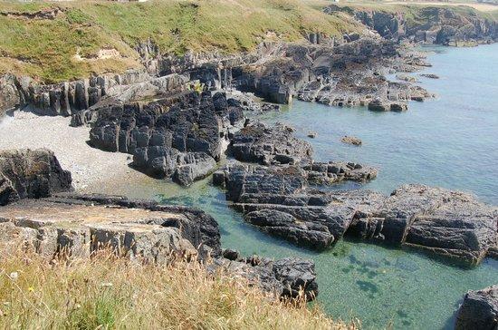 Coed y Bryn Bed and Breakfast : View from coastal walk