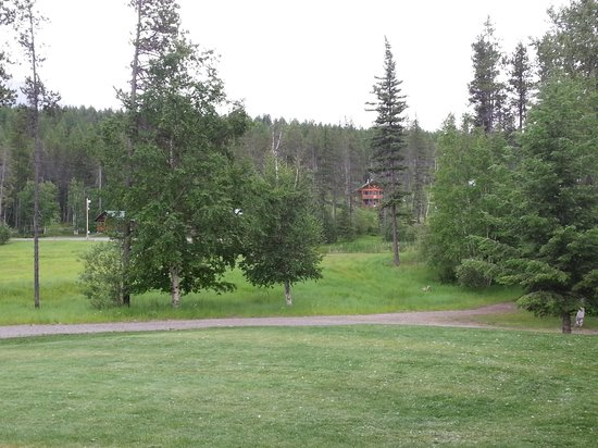 Glacier National Park Cabins & Lodging: grounds