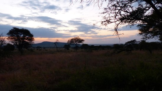 Dunia Camp, Asilia Africa: view of the sun rise from our tent