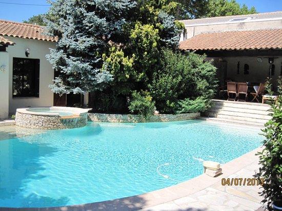 La Palmeraie : la magnifique piscine dans un superbe jardin fermé