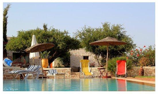 Dar Maris Maison d'hotes : piscine