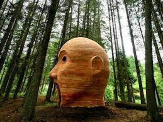 Kielder Caravan & Camping Site: kielder head