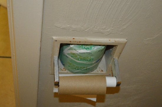 Motel 6 Lake Charles, La: Would you brave the lovely brown spots for some toilet paper?