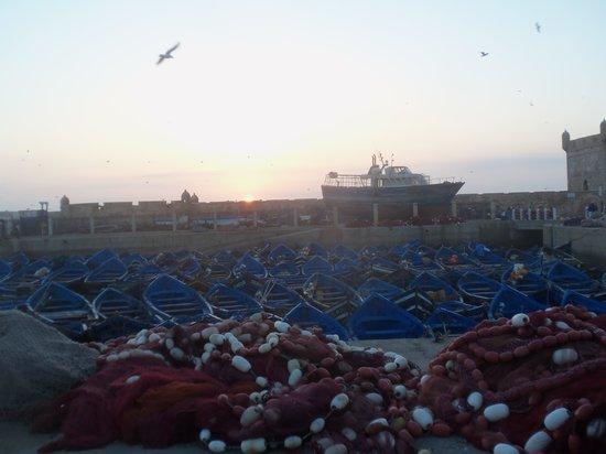 Riad Sidi Magdoul: Coucher de soleil sur le port d'Essaouira