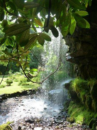 Kilfane Waterfall and Glen : Waterfall