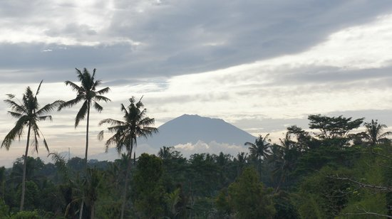 Ubud Green: view from restuarant