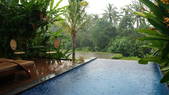 Ubud Green: Private pool over looking rice fields