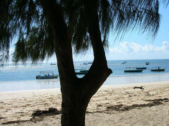 Sandies Coconut Village: Watamu