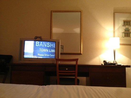 Herbert Park Hotel: Rubbish TV