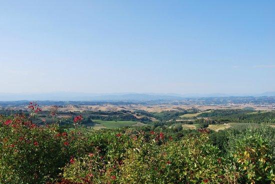 Rigone in Chianti : Die Aussicht von der Anlage