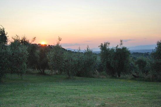 Rigone in Chianti : Panorama