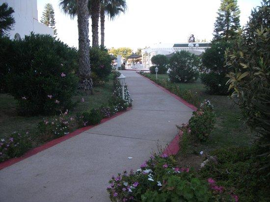 Jinene & Royal Jinene Hotels: the garden