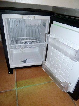 Hotel Navona: Mini fridge