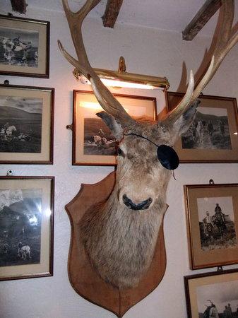The Hood Arms: one-eyed deer