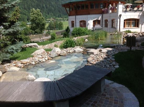 Kristiania Leading Nature & Wellness Resort: ...il laghetto.....