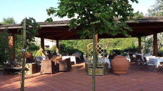 Villa Rigacci: Zicht op het terras
