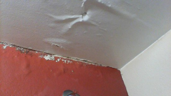 Red Roof Inn Virginia Beach - Norfolk Airport: mold and damaged ceiling