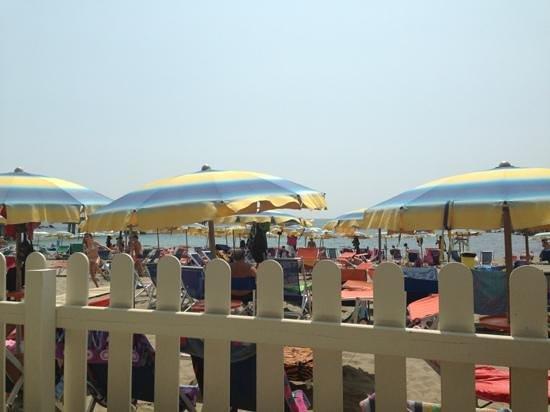 Bagno nettuno marina di massa ristorante recensioni numero di telefono foto tripadvisor - Bagno milano marina di massa ...