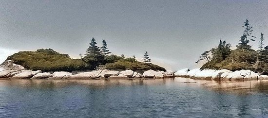 East Coast Outfitters Sea Kayaking: Hermit Crab Cove
