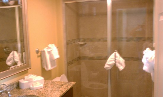 SpringHill Suites San Antonio SeaWorld®/Lackland: Shower