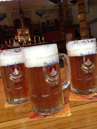 Steinbrau Photo