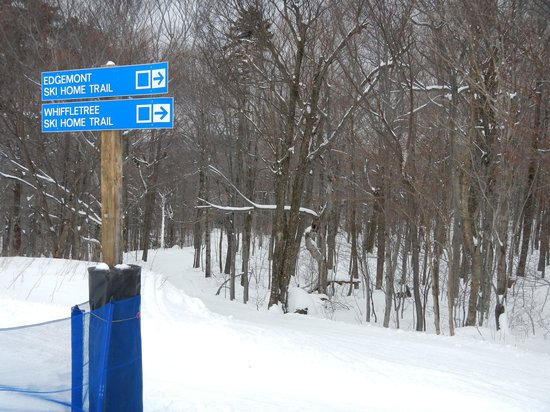 Whiffletree Condominiums : Ski home trail
