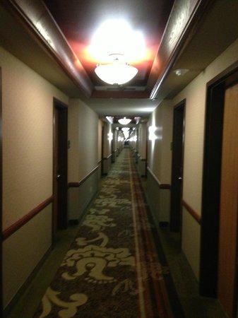 Holiday Inn Midland: Hallway (4th floor)